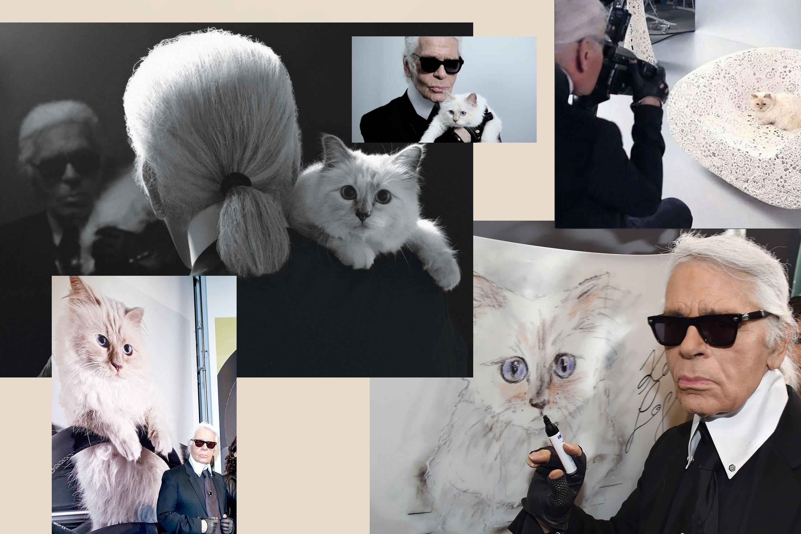 acdbe64af2 ... 2015-ben Lady Gagat és akkori stylistját, Brandon Maxwellt fotózta Coco  Chanel párizsi apartmanjában a Hollywood Reporter címlapjára. Jaj, annyi  emlék!